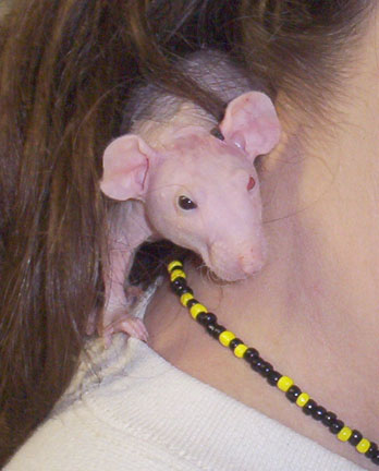 spirit_necking.jpg