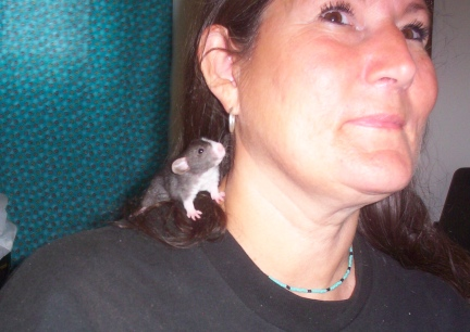 Little Mac on Marna's shoulder